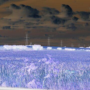 Sky Fall by DaveKing71