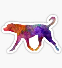 Transylvanian Hound in watercolor Sticker