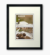 The 14th Parallel Framed Print
