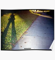 Shadow and Grass (Lomo) Poster