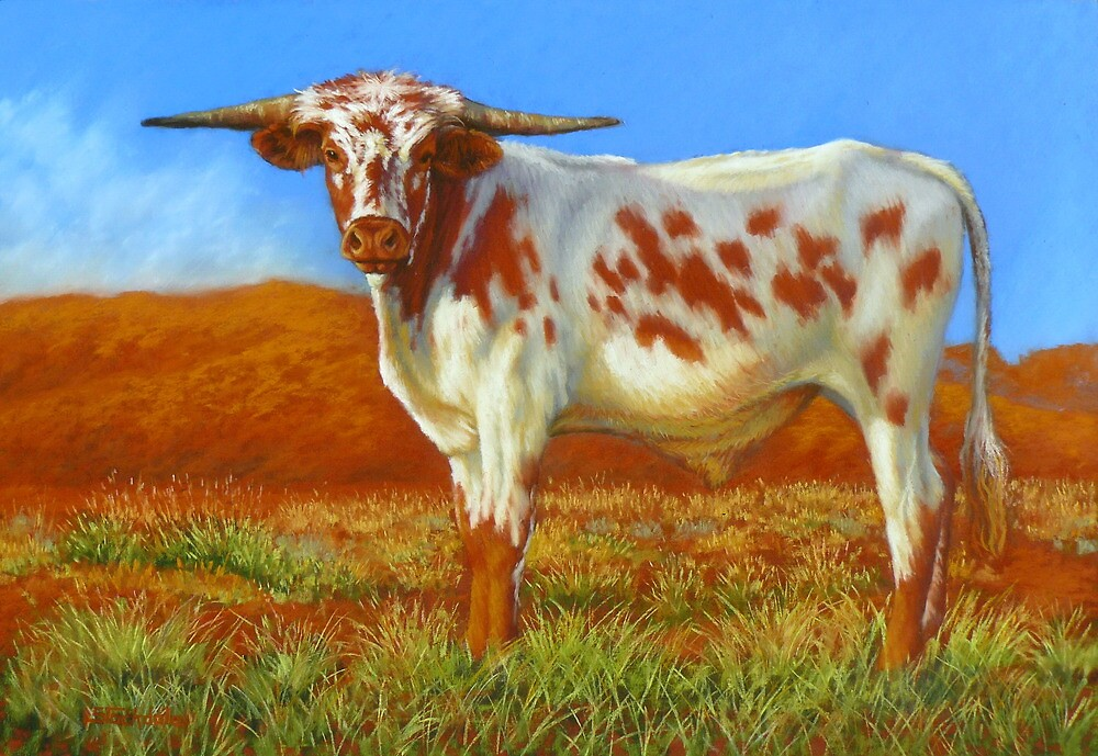 Longhorn In The Outback by Margaret Stockdale