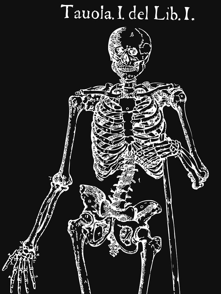 White Skeleton Anatomy by Archpress