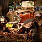 Golden Years by pat gamwell