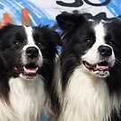 2 Doggies  by Karen Havenaar