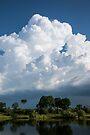 Zambezi Storm Clouds by Will Hore-Lacy
