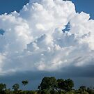 Zambezi Storm Clouds by Will Hore-Lacy