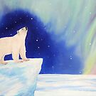 Polar Lights by Mike Paget