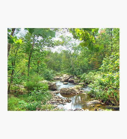 September Arrives At The Unami Creek Photographic Print