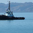 Tug Boat on way to bring in Cargo Ship. Townsville. N.Que. by Rita Blom