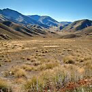 The Lindis Pass (II) by Christine Smith