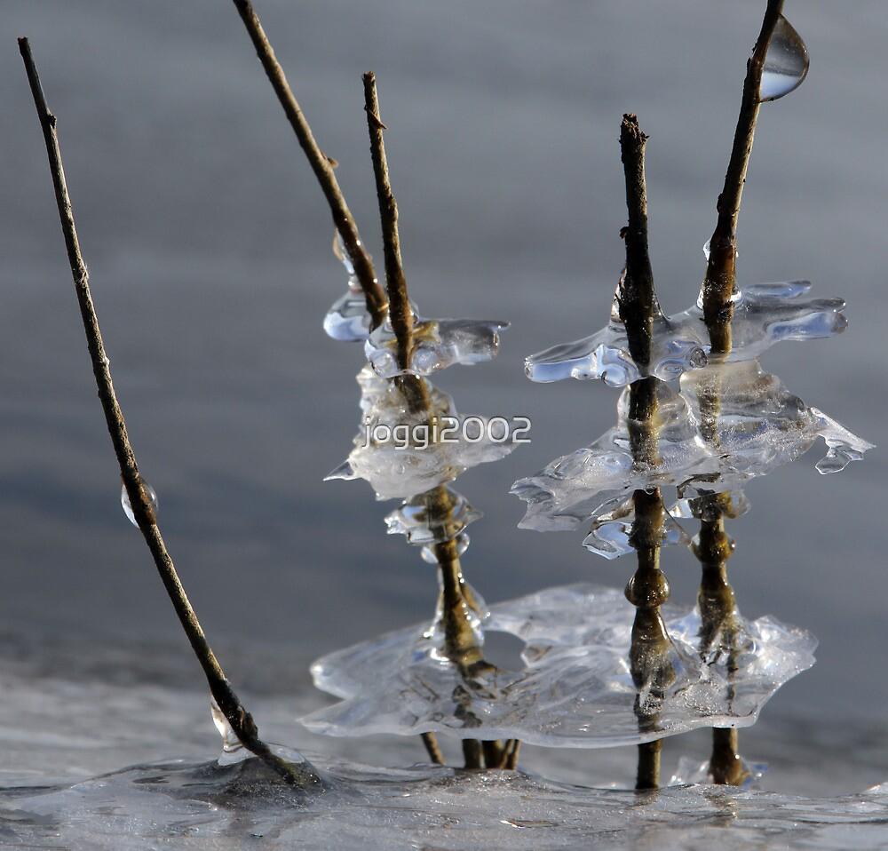 Ice figures by joggi2002