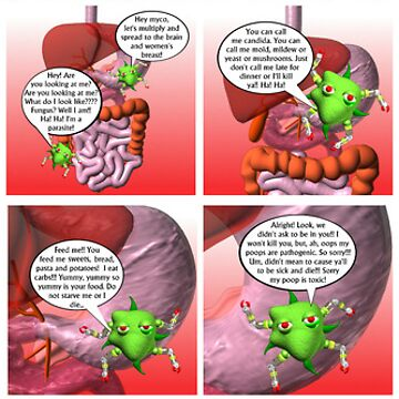 "Valxart Fudebots cartoon ""Death by fungus"" by Valxart"