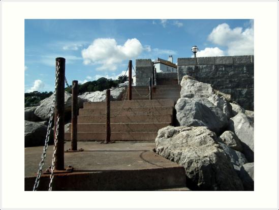Sea Steps by lynn carter