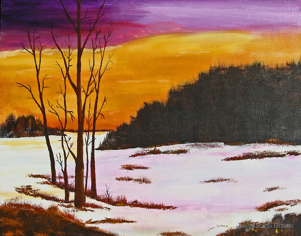 Winter Solstice by Jack G Brauer