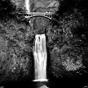 Oregon Waterfalls (The View) by Dreamcypher