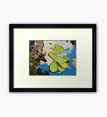 Lily Pad Frogger Framed Print