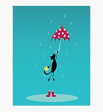 cat fly with red umbrella on rain Photographic Print