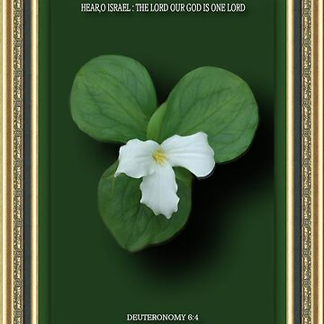 "☸•°*""˜TRILLIUM ~STATE FLOWER OF ONTARIO CANADA WITH SCRIPTURE PLZ READ DESCRIPTION TY˜""*°•☸  by Rapture777"