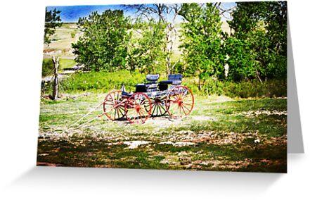 Vintage Buggy by designingjudy