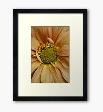 LOOk at Meeee.......I am different ! Framed Print