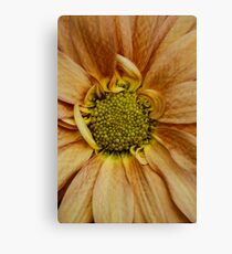 LOOk at Meeee.......I am different ! Canvas Print