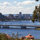 Perth fom Kings Park by pennyswork