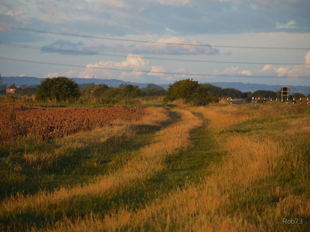 Tracks across Romney Marsh at dawn by Rob73