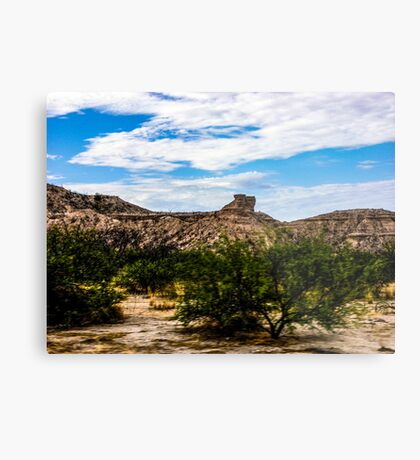 The View From My Car In Arizona 1 Metal Print