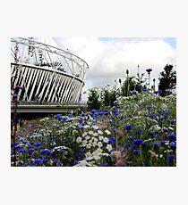 Olympic park Photographic Print