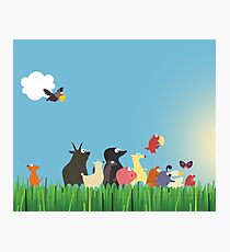 What's happening on the farm? Kids collection Photographic Print