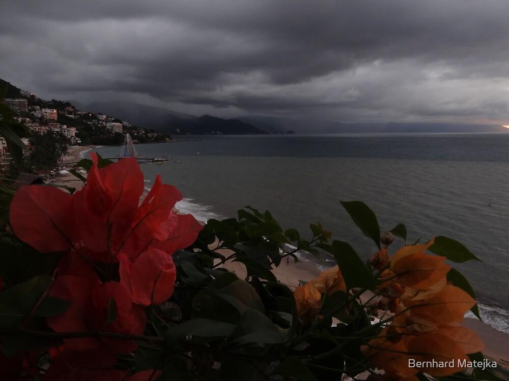 rain is coming... lluvias vienen by Bernhard Matejka