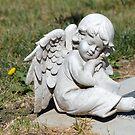 Resting in Peace by rosaliemcm