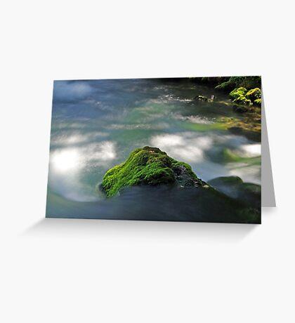 Mossy Rock in Big Spring Greeting Card