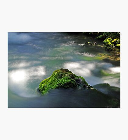 Mossy Rock in Big Spring Photographic Print