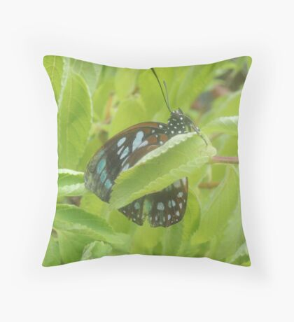 Hang On In There Throw Pillow