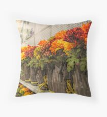 Duplication of Beauty for Sale Throw Pillow