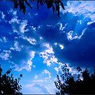 Storm Clouds  by dedakota