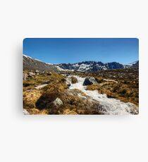 A Cool Mountain Stream Canvas Print