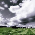 Skyfall by martin bullimore