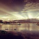 Sun Rays At Fleet Pond by martin bullimore