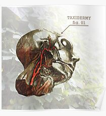 Taxidermy Poster