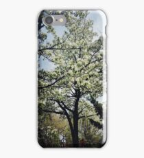 Springtime Saddness iPhone Case/Skin