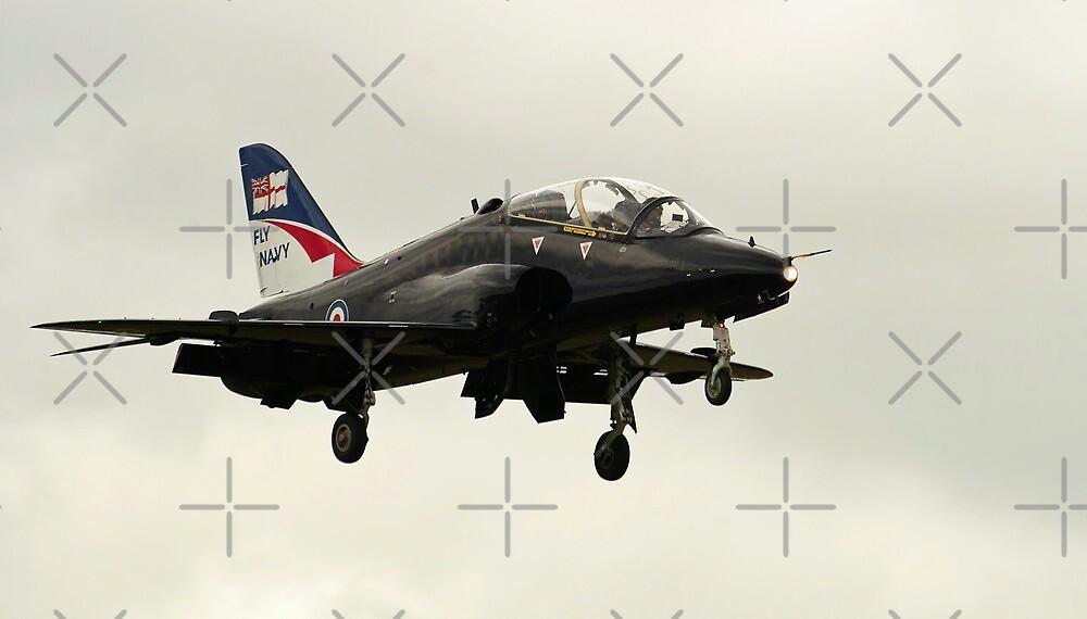 Fly Navy Hawk by Stephen Kane