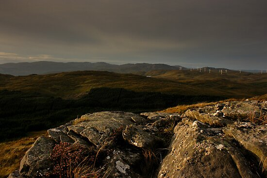 Bluestacks From The South by Adrian McGlynn