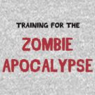 Train for - Zombies by keirrajs
