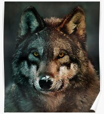 Animal Art - Wolf Poster