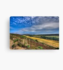Headon Warren IOW Canvas Print