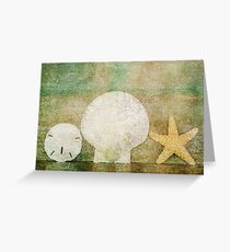 Sand Shell Star Greeting Card