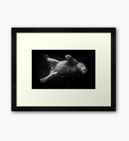Polar Bear Dream Framed Print