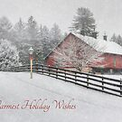 Warmest Holiday Wishes by Lori Deiter